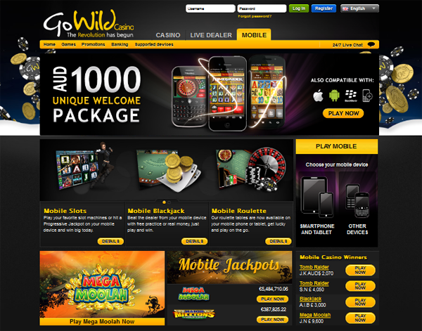 go wild casino flash player